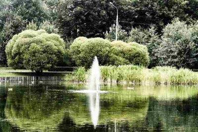 Парк отдыха Дубки